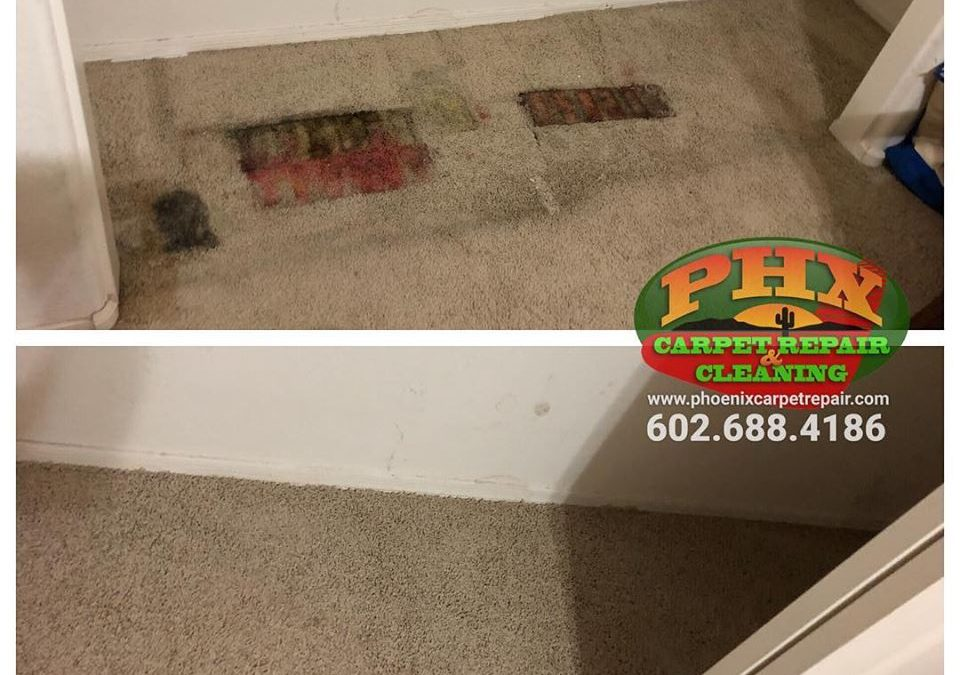 Scottsdale, AZ: Carpet Repair